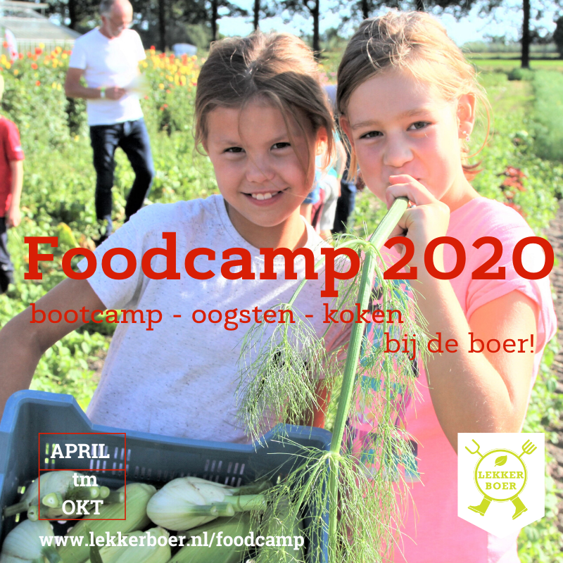 Foodcamp_01 28-08-2020 Zwolle